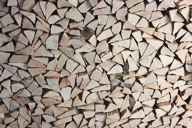 Alegerea lemnului de foc – sfaturi utile